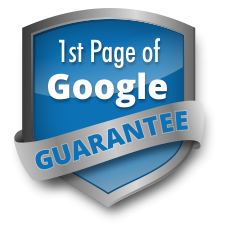 Small Business Website Design Packages - First Page of Google Gaurantee Available